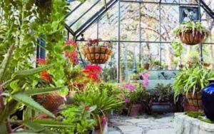 Glass Greenhouse - Sunshield Retractable Enclosure
